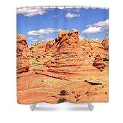 Arizona Dreamscape Shower Curtain