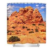 Arizona Elegance Shower Curtain