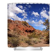 Arizona Red Rock Shower Curtain