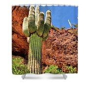 Arizona Saguaro #1 Shower Curtain