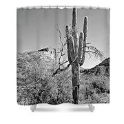 Arizona Saguaro Shower Curtain
