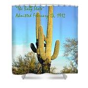 Arizona The Baby State Shower Curtain