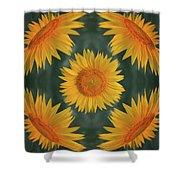 Around The Sunflower Shower Curtain