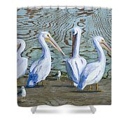 Around The Water Cooler Shower Curtain