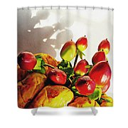 Arrangement On Squash 3 Shower Curtain by Sarah Loft