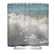 Arrived Shower Curtain
