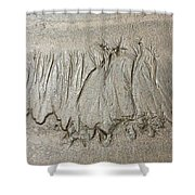 Art Created By Nature On Sand  Shower Curtain