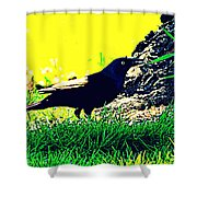 Art Deco Grackle Shower Curtain