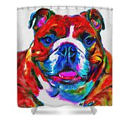 Art Dogportrait Shower Curtain