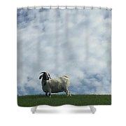 Art Goat Shower Curtain