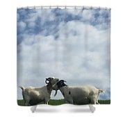Art Goats II Shower Curtain
