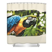 Art In Moku Hanga Style Shower Curtain
