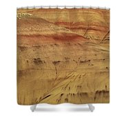 Art In Nature Shower Curtain