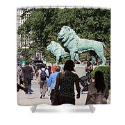 Art Institute Of Chicago Bronze Lions Shower Curtain