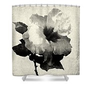 Art Is The Hibiscus -black And White Shower Curtain