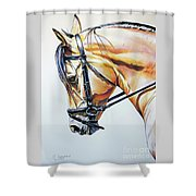 Art Of Dreaming Shower Curtain