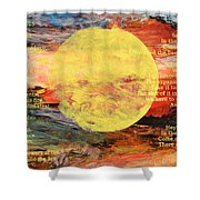Art Of Fire Shower Curtain