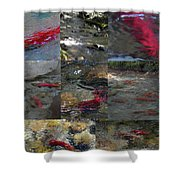 Art Of Kokanee Shower Curtain