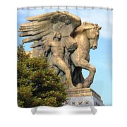 Art Of Peace Pegasus Shower Curtain