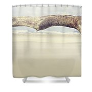Art On The Beach Shower Curtain