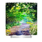 Art Rendered Country Pathway Shower Curtain