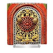 Artful Mystery  Shower Curtain