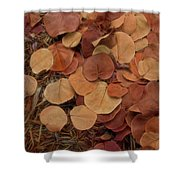 Artfully Scattered Sea Grape Leaves Shower Curtain