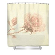 Artistic Etched Rose Shower Curtain