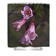 Artistic In Pink Shower Curtain
