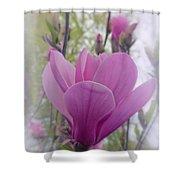 Artistic Magnolia Shower Curtain