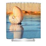 Artistic Nautilus Shower Curtain