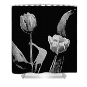 Artsy Tulips Shower Curtain