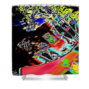 Artwalk Abstract Shower Curtain
