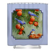 Bird Painting - Bluebirds And Peaches Shower Curtain