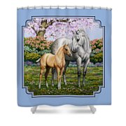 Spring's Gift - Mare And Foal Shower Curtain by Crista Forest