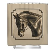 Horse Painting - Focus In Sepia Shower Curtain