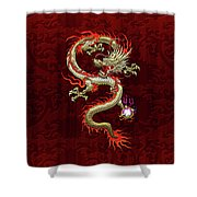 Golden Chinese Dragon Fucanglong On Red Silk Shower Curtain