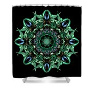Sacred Aspects - Divine Feminine Shower Curtain