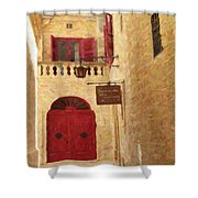 The Silent City Shower Curtain