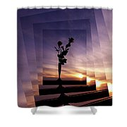Red Roses At Sunset Shower Curtain