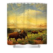 Buffalo Fox Great Plains Western Landscape Oil Painting - Bison - Americana - Historic - Walt Curlee Shower Curtain