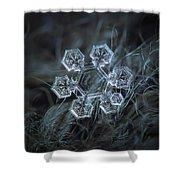 Icy Jewel Shower Curtain by Alexey Kljatov