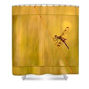 Dragonfly Pole Dance Shower Curtain