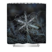 Leaves Of Ice Shower Curtain by Alexey Kljatov