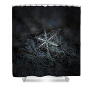 Leaves Of Ice Shower Curtain