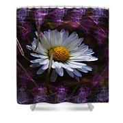 Dainty Daisy Shower Curtain