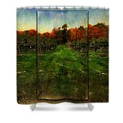 Into The Apple Orchard Shower Curtain