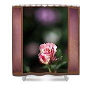 Romantic Rose Bud Shower Curtain