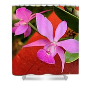 Pink Pair Shower Curtain