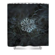 Snowflake Photo - Alcor Shower Curtain by Alexey Kljatov